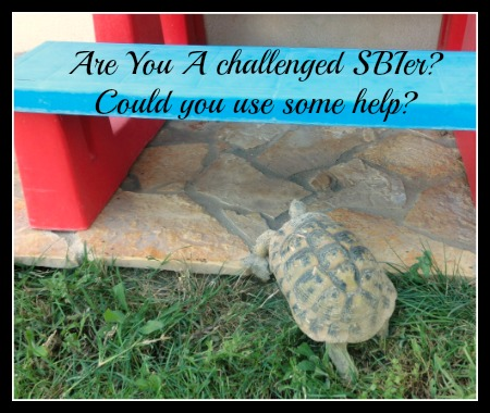 Are you a SBI tortoise that needs help with the next hump?