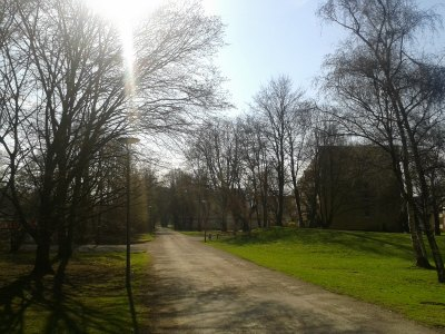 I recorded this very blog post while taking a walk in a park. My team of virtual assistants transcribed and formatted it.