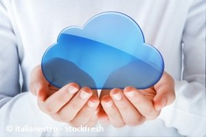 online file sharing/cloud services