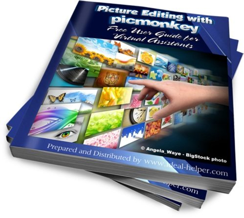Picture editing with picmonkey ebook