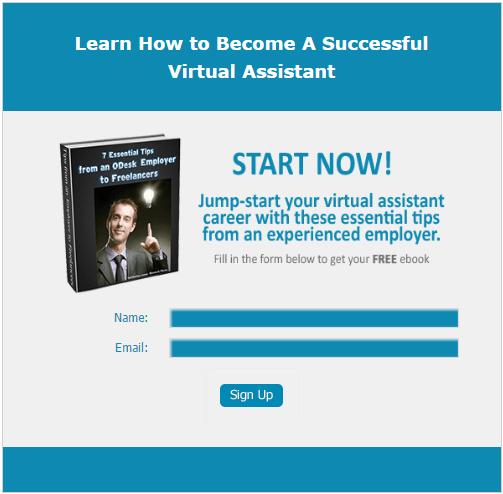 Virtual assistant work diary screenshot